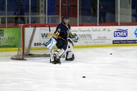 2014-03-22 Fox Cities Ice Dogs vs Mosinee Papermakers