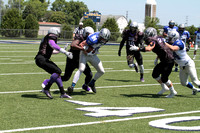 2017-07-08 Fox Valley Force vs River City Rough Riders